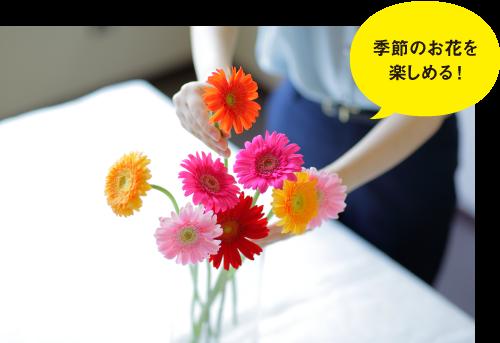 はなしことばのメリット 季節のお花を楽しめる!