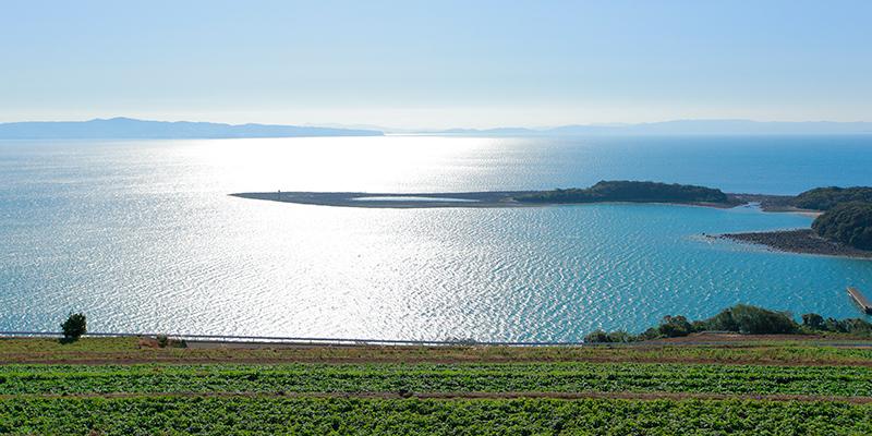 青々とした美しい橘湾が一望できる諫早市飯盛地区